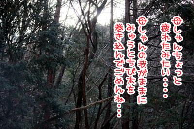 09_20100213144811.jpg