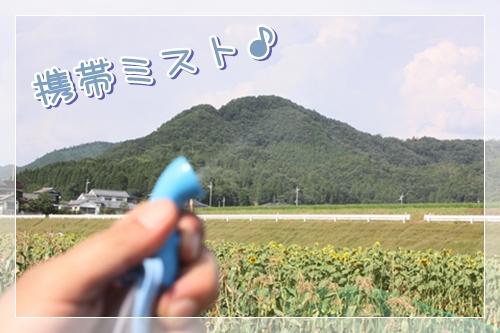 100_20100911140719.jpg