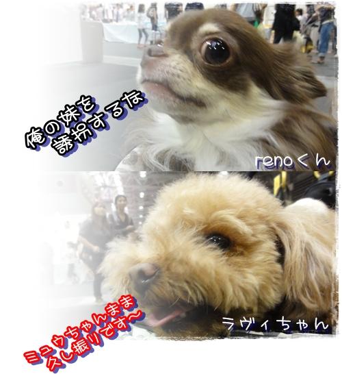 10_20100921030223.jpg