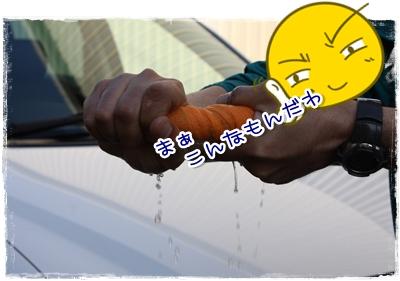 11_20100410143532.jpg