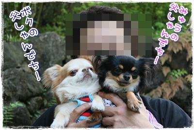 15_20100514222736.jpg