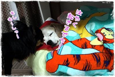 23_20100523193826.jpg