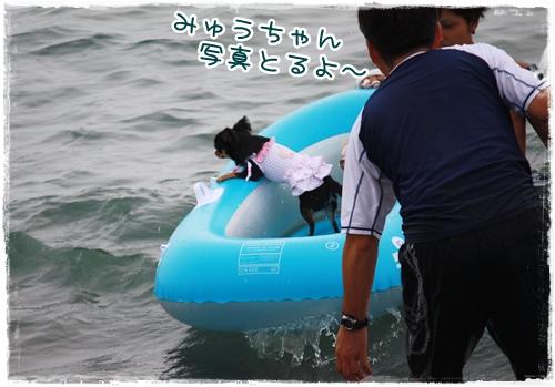 33_20100819164249.jpg