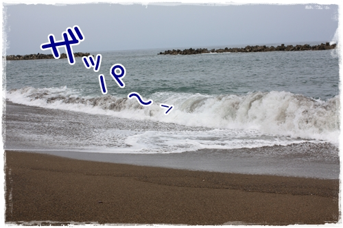35_20100819164247.jpg
