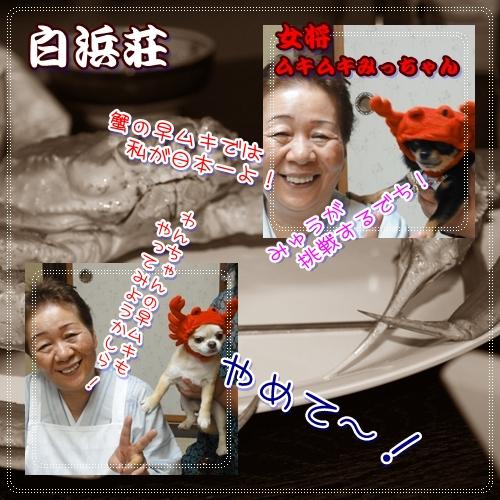 60_20100818112126.jpg