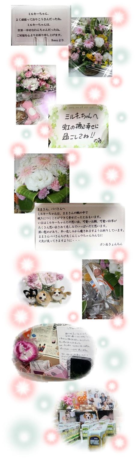 72_20100725052733.jpg