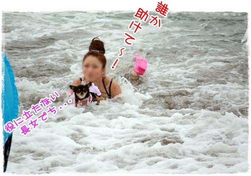 80_20100819164331.jpg