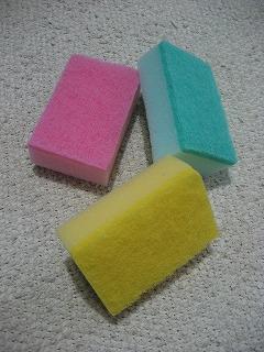 20110110_sponge_2.jpg