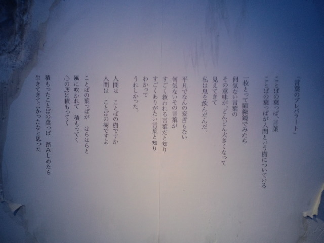 2012_0202_181811-CA3H1565.jpg