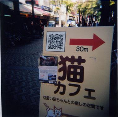 200911201.jpg