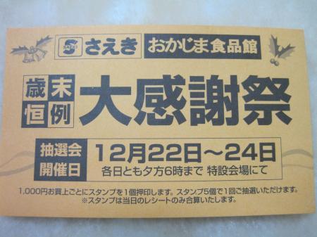001_convert_20101225185011.jpg