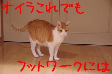 1_20110906233032.jpg