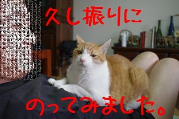 3_20110724081011.jpg