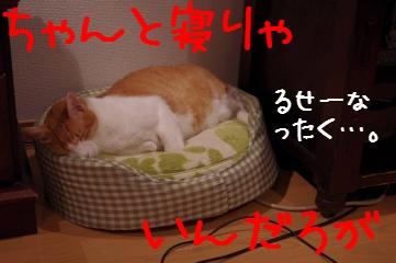 6_20111005205702.jpg