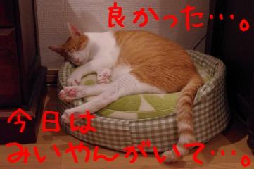 RES06161.jpg