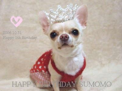 birthday01_20091108212941.jpg
