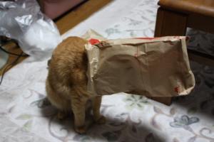 モスバーガーの袋のみい
