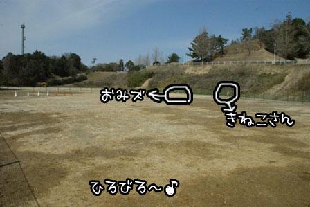 16_20120324120804.jpg