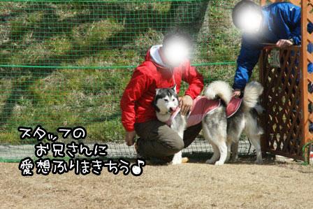 1_20120324120645.jpg