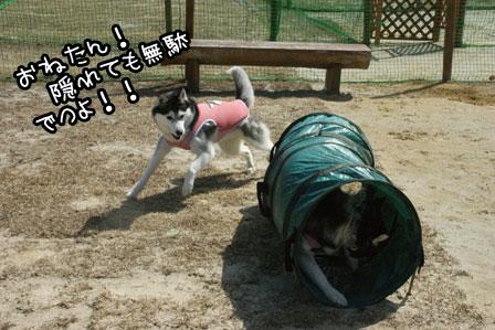 3_20120324120658.jpg