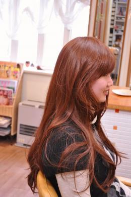 DSC_0633_convert_20110115120631.jpg