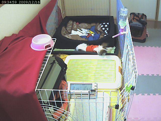 video_20091216094030.jpg