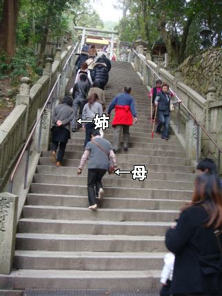 金比羅参り⑤急階段