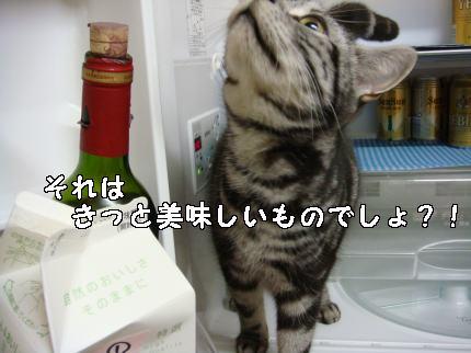 おいしいもの?