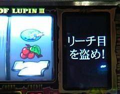 zeni-2555.jpg