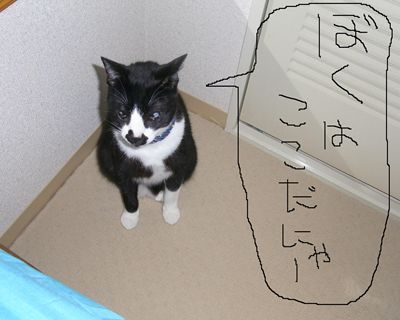 ken4_R_20110428232412.jpg