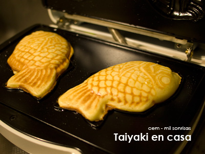 The Taiyaki