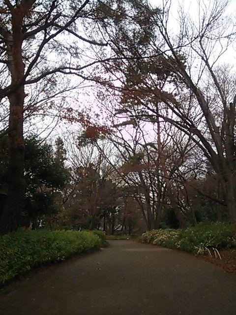 jiyuhuukei201212.jpg