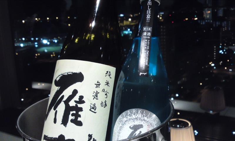 110716_雁木と夜景