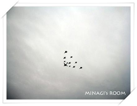 IMG_1276のコピー