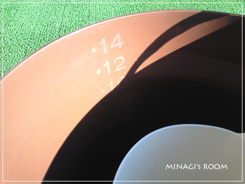 20110106 (3)のコピー