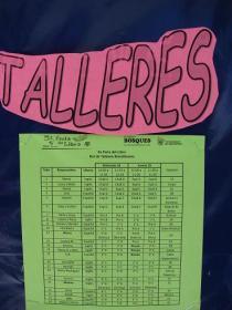 24日 tallers