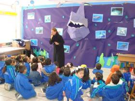 24日 サメの生態