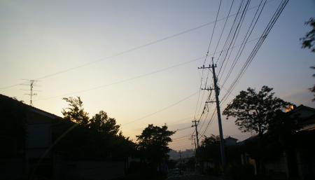 IMGP6848-1.jpg
