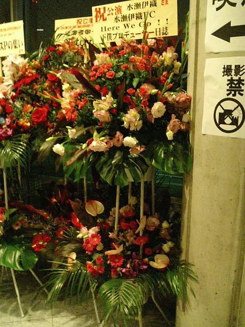 20100703_flower2.jpg
