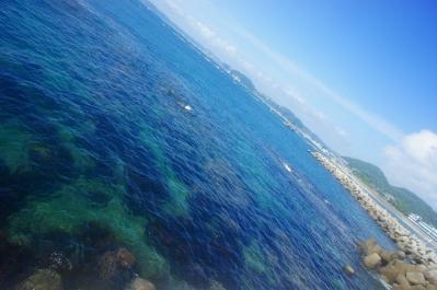 葉山の綺麗な海にて