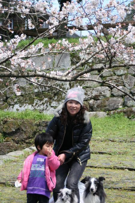 20100321sakura+043_convert_20100322205423.jpg