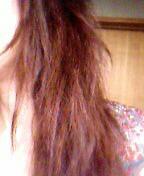 乾燥している髪