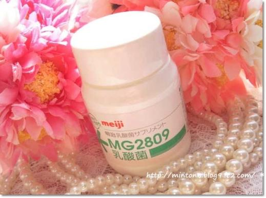 MG2809.jpg