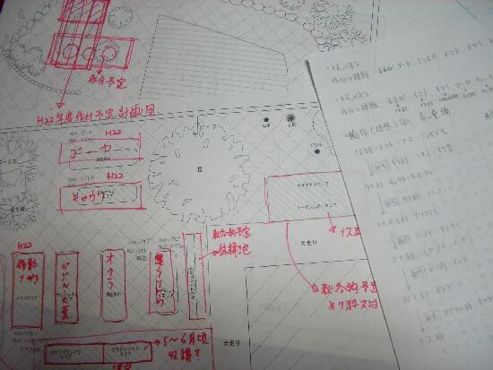 手書き作付け図
