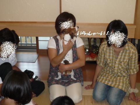 P1080571_convert_20100829212549.jpg