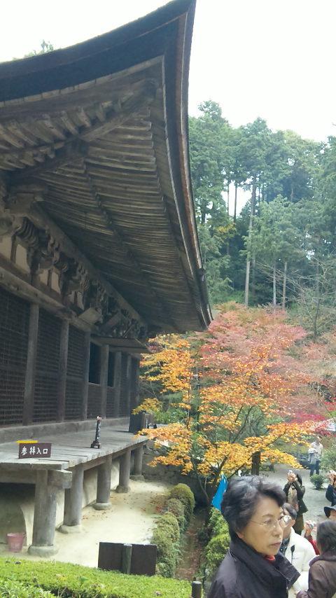 DVC00636(金剛輪寺)