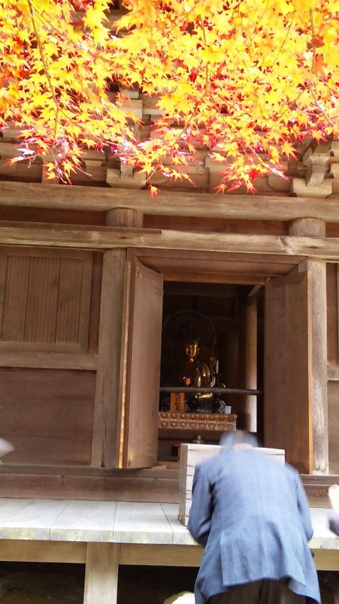 DVC00634(金剛輪寺)