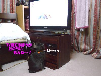 TV見てるほうがたのちいもんね~