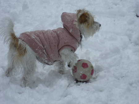 サッカーしようよ♪