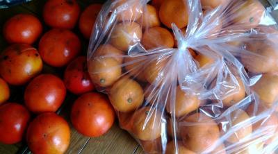 柿とミカン